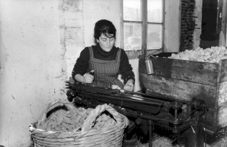 Fabrico de rolha na garlopa