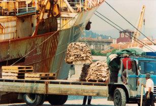 Navio arrastão Santa Maria Madalena no porto de Viana do Castelo