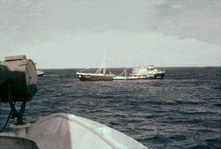 Navio Gil Eannes junto de bacalhoeiros