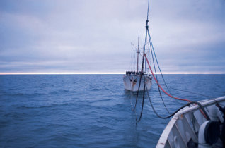 Navio Vila do Conde a reabastecer-se no navio Gil Eannes