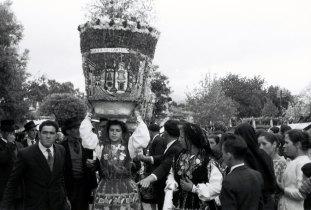 Cestos de Vila Franca