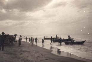 Barcos do pilado