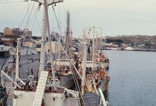 Frota bacalhoeira atracada no porto de St. John's
