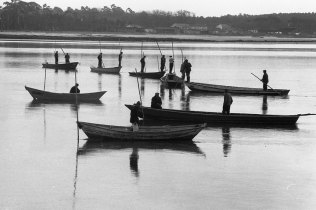 Pesca da Lampreia