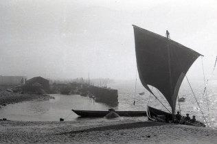 Barco de Água-Arriba