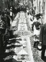 Peregrinação de Nossa Senhora de Fátima a Viana do Castelo