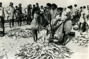 Porto de Pesca de Mormugão