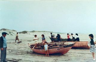 Barcos do Sargaço