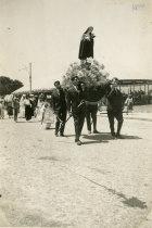 Festa de Vilar de Mouros