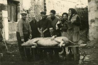 Matança do porco