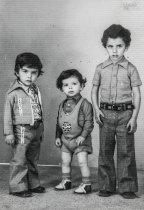 Retrato de Paulo, Henrique e Manuel