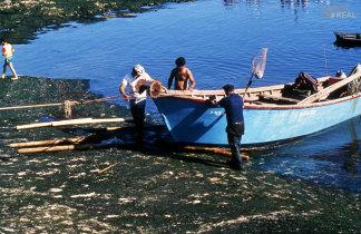 Transporte da embarcação para terra