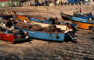 Embarcações no porto de Vila Praia de Âncora
