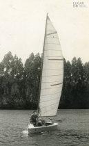 Passeio de barco no Marachão