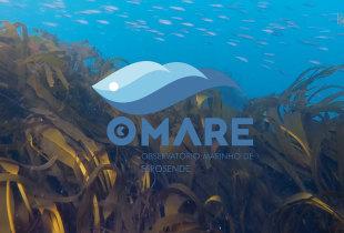 OMARE (versão curta)