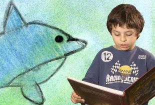 No Mar Um Cantinho e Um Golfinho!